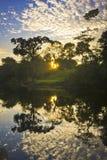 Lever de soleil de jungle sur le fleuve Amazone avec la réflexion dans l'eau Photographie stock libre de droits