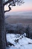 Lever de soleil de l'hiver Photos stock