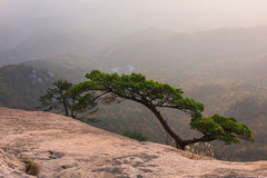 Lever de soleil de la crête de Baegundae, Autumn Season aux montagnes de Bukhansan Photographie stock