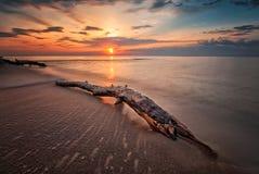 Lever de soleil de mer Photo libre de droits
