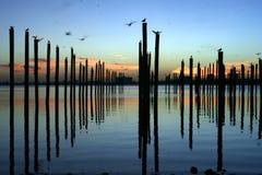 lever de soleil de pôles d'arrimage Image libre de droits