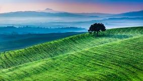 Lever de soleil de pays des merveilles en Toscane Photo libre de droits