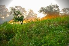 Lever de soleil de paysage Photo libre de droits