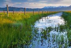 Lever de soleil de prairie de Camas Photo stock