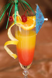 Lever de soleil de Tequila Photographie stock libre de droits
