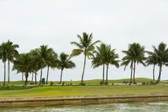 Lever de soleil de terrain de golf et herbe aménagée en parc Cap Coral Florida, U photos libres de droits