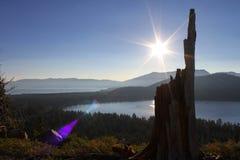 Lever de soleil de tronçon d'arbre photographie stock libre de droits