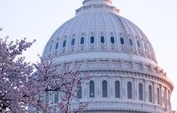 Lever de soleil derrière le dôme du capitol dans le C.C Images libres de droits