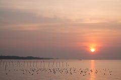 Lever de soleil dramatique à QM. Centre de récréation de Bangpu Images libres de droits