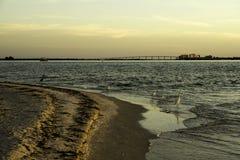 Lever de soleil en île de Sanibel Image stock