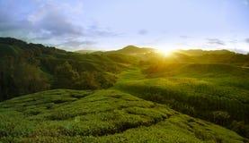 Lever de soleil en début de la matinée Image libre de droits
