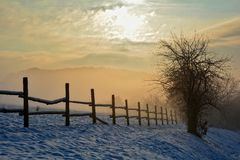 Lever de soleil en hiver avec l'arbre, la barrière et le brouillard Photographie stock libre de droits