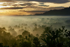 Lever de soleil en Indonésie Photos stock