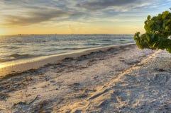 Lever de soleil en île de Sanibel Photographie stock libre de droits