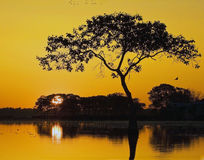 Lever de soleil en Louisiane images stock