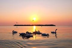 Lever de soleil en mer Photos libres de droits