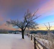 Lever de soleil en montagnes carpathiennes Images libres de droits