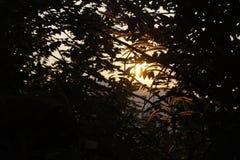 Lever de soleil en silhouette Image libre de droits