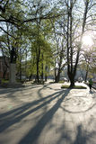 Lever de soleil en stationnement de ville Photo libre de droits