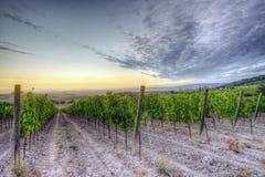 Lever de soleil en Toscane Photos libres de droits