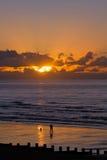 Lever de soleil et bêcheur d'amorce Images libres de droits