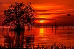 Lever de soleil et beau ciel dans le lac Phatthalung Thaïlande de songkhla Photo libre de droits
