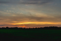 Lever de soleil et champ de maïs photographie stock