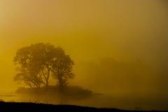 Lever de soleil et silhouette de matin Photo stock