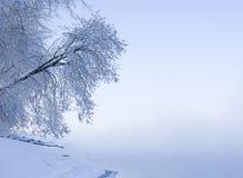 Lever de soleil froid photo libre de droits