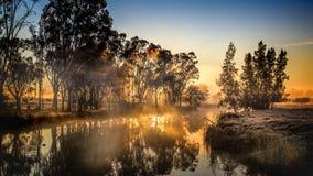 Lever de soleil givré de rivière Photo stock