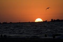 Lever de soleil I de mer Images stock