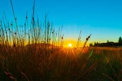 Lever de soleil intense au bâti Maunganui photo stock