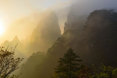 Lever de soleil jaune de montagne images libres de droits