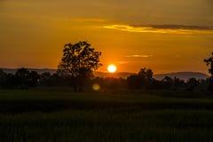 Lever de soleil léger Photos libres de droits