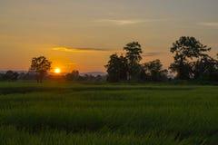Lever de soleil léger Photo libre de droits