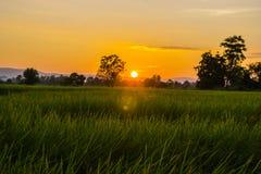 Lever de soleil léger Photo stock
