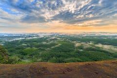 Lever de soleil de matin et brumeux de la roche d'arbre Image libre de droits
