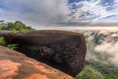 Lever de soleil de matin et brumeux de la roche d'arbre Images stock
