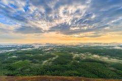 Lever de soleil de matin et brumeux de la roche d'arbre Photo stock