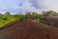 Lever de soleil de matin et brumeux de la roche d'arbre Photographie stock libre de droits