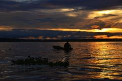 Lever de soleil péruvien du fleuve Amazone Photo libre de droits