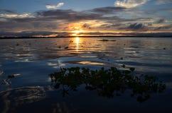 Lever de soleil péruvien du fleuve Amazone Images stock