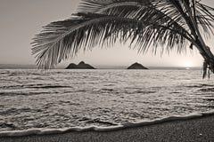 Lever de soleil Pacifique à la plage de Lanikai en Hawaï photos libres de droits
