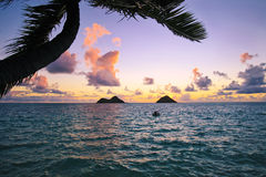 Lever de soleil Pacifique en Hawaï photographie stock libre de droits
