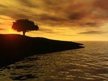 Lever de soleil par l'océan photographie stock libre de droits