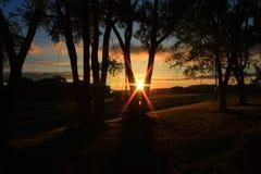 Lever de soleil par les arbres Image libre de droits