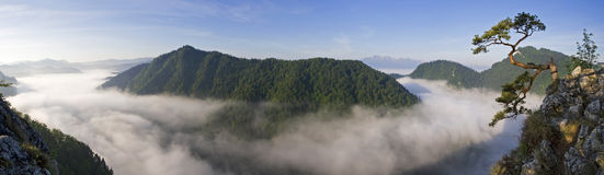 lever de soleil pieniny de sokolica de la Pologne Images stock