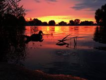 Lever de soleil réfléchi Photo stock