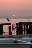 Lever de soleil rose Photos stock