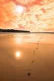 Lever de soleil rouge scénique de Ballybunion Photographie stock
